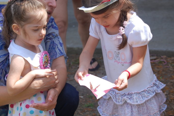 A Butterfly Release Using Painted Lady Butterflies Purchased From Cloverlawn Butterflies