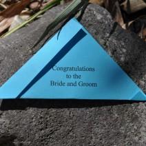 butterflies-for-wedding-release