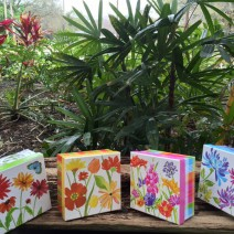 40 Painted Lady butterflies in decorative mass release box