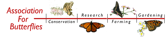 Logo: Association for Butterflies