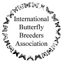 Logo: International Butterfly Breeders Association