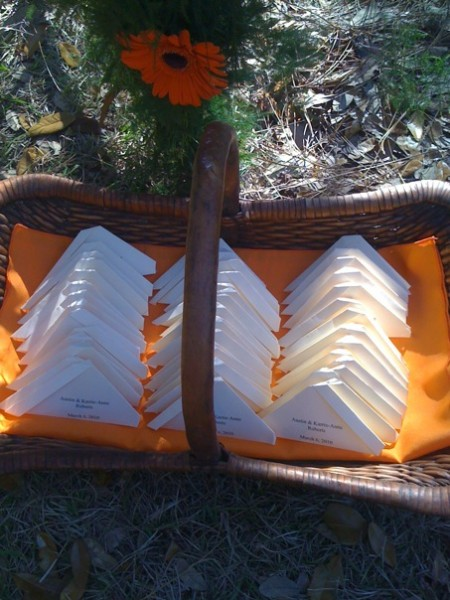 Butterfly Release Funeral Package